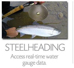 FISHING APP - STEELHEADING