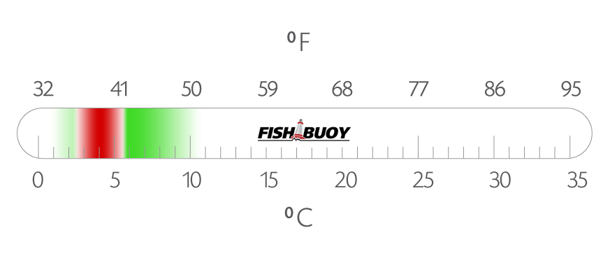 Ideal Water Temperatures for Atlantic Halibut